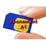 A1 - Abonament cu plata anticipată pentru 12 luni